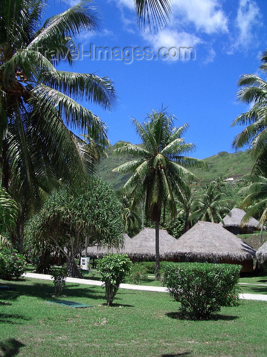 french-polynesia11: French Polynesia - Moorea / MOZ (Society islands, iles du vent): bungalow over the beach - photo by R.Ziff - (c) Travel-Images.com - Stock Photography agency - Image Bank