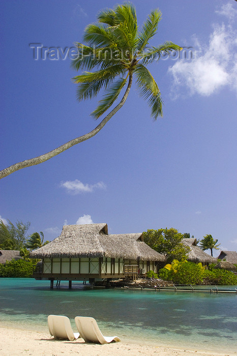 french-polynesia19: Papetoai, Moorea, French Polynesia: InterContinental Hotel - beach chairs and overwater bungalows - tropical resort - photo by D.Smith - (c) Travel-Images.com - Stock Photography agency - Image Bank