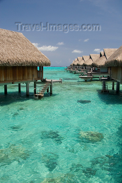 french-polynesia25: Papetoai, Moorea, French Polynesia: InterContinental Hotel - overwater bungalows - emerald waters of a South Pacific Ocean lagoon - photo by D.Smith - (c) Travel-Images.com - Stock Photography agency - Image Bank