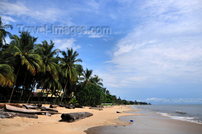 gabon16: Libreville, Estuaire Province, Gabon: coconut trees and golden sand - Tropicana beach, in front of Hotel Tropicana - Quartier Tahiti - photo by M.Torres - (c) Travel-Images.com - Stock Photography agency - Image Bank