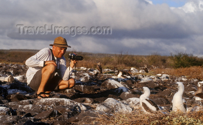 galapagos29: Isla Española / Hood Island, Galapagos Islands, Ecuador: tourist photographing Blue-footed Booby birds at close range (Sula nebouxii) - photo by C.Lovell - (c) Travel-Images.com - Stock Photography agency - Image Bank