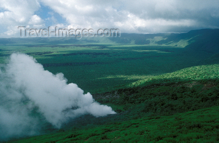 galapagos54: Isla Isabela / Albemarle island, Galapagos Islands, Ecuador: fumerole in the Alcedo Crater - view of the crater - photo by C.Lovell - (c) Travel-Images.com - Stock Photography agency - Image Bank