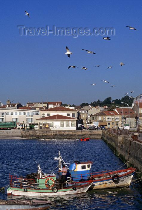 galicia43: Galicia / Galiza - Cambados, Pontevedra province: fishing boats -  Rias Baixas coast - Comarca do Salnés - photo by S.Dona' - (c) Travel-Images.com - Stock Photography agency - Image Bank