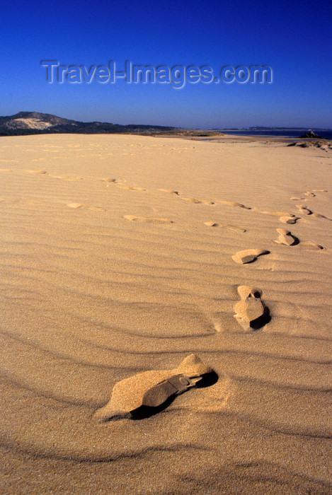 galicia54: Galicia / Galiza - Corrubedo National Park - A Coruña province: footprints on the sand dune - Barbanza Peninsula - Parque Natural Dunas de Corrubedo - Rias Baixas - photo by S.Dona' - (c) Travel-Images.com - Stock Photography agency - Image Bank