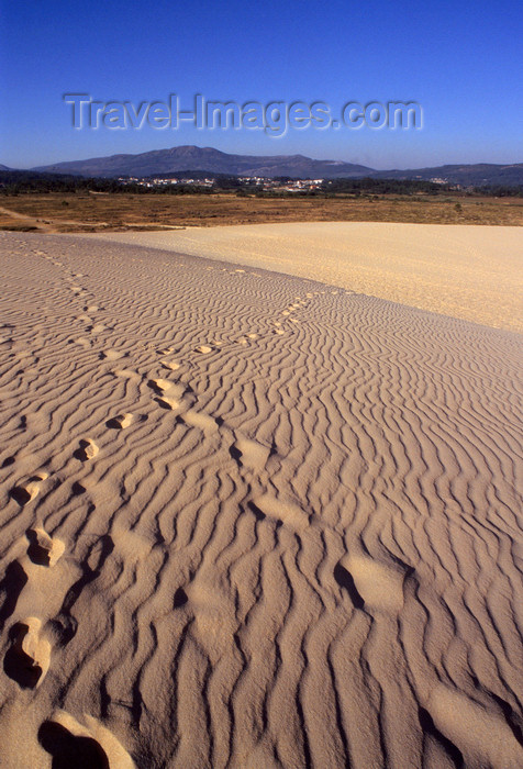 galicia55: Galicia / Galiza - Corrubedo National Park - A Coruña province: footprints on the sand dune - Parque Natural Dunas de Corrubedo - Rias Baixas - photo by S.Dona' - (c) Travel-Images.com - Stock Photography agency - Image Bank