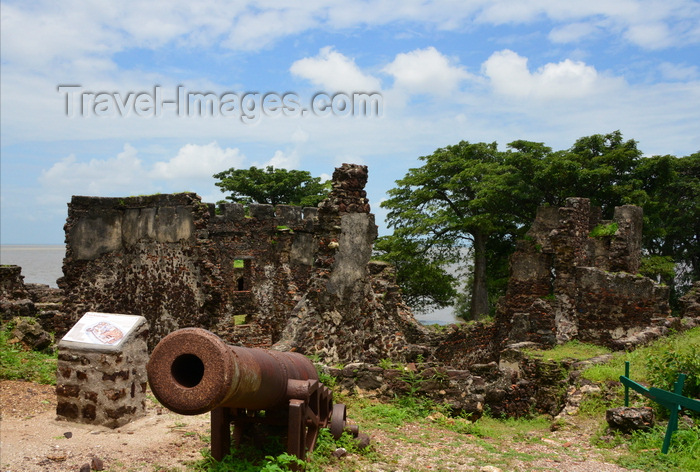 gambia101: James Island / Kunta Kinteh island, The Gambia: British 18h century cannon and the ruins of Fort James - UNESCO world heritage site - photo by M.Torres - (c) Travel-Images.com - Stock Photography agency - Image Bank