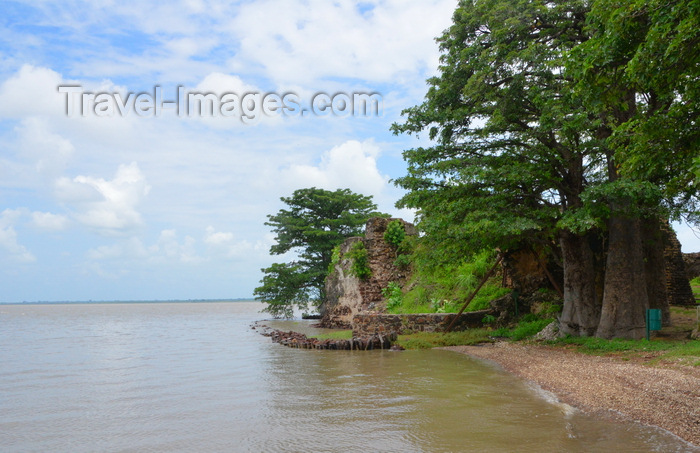gambia103: James Island / Kunta Kinteh island, The Gambia: crumbling walls of Fort James, its foundations eroded by the river Gambia - beach with baobab trees - UNESCO world heritage site - photo by M.Torres - (c) Travel-Images.com - Stock Photography agency - Image Bank