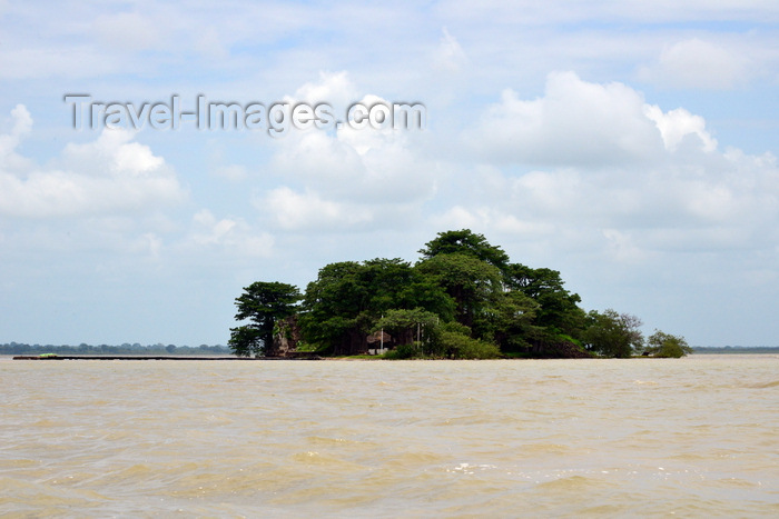 gambia108: James Island / Kunta Kinteh island, The Gambia: the island seen from the north, with Fort James mostly hidden by baobab trees - UNESCO world heritage site - photo by M.Torres - (c) Travel-Images.com - Stock Photography agency - Image Bank
