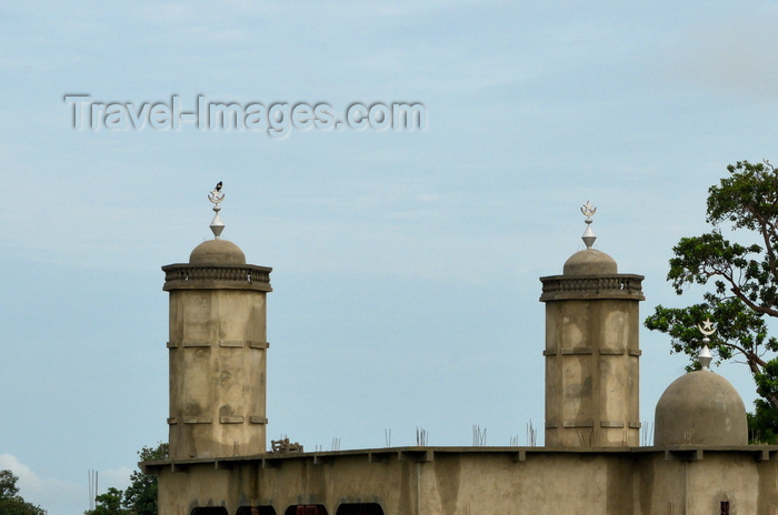 gambia116: Fass, North Bank division, Gambia: unpainted rural mosque with twin minarets and small dome - photo by M.Torres - (c) Travel-Images.com - Stock Photography agency - Image Bank