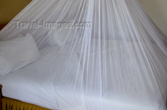 gambia62: Banjul, The Gambia: bed covered by mosquito net, ready for the night - malaria prevention - photo by M.Torres - (c) Travel-Images.com - Stock Photography agency - Image Bank