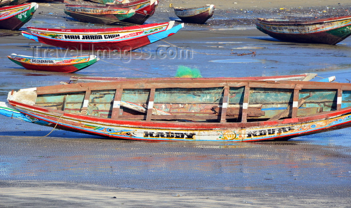 gambia70: Barra, The Gambia: low tide - traditional wooden fishing boats on the beach - north bank of the River Gambia - photo by M.Torres - (c) Travel-Images.com - Stock Photography agency - Image Bank