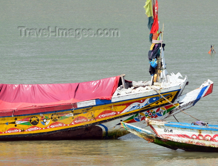 gambia81: Barra, The Gambia: colorful bows of traditional wooden fishing boats of the River Gambia estuary - photo by M.Torres - (c) Travel-Images.com - Stock Photography agency - Image Bank