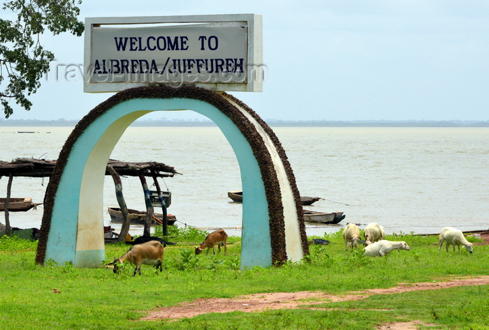 gambia87: Albreda, Gambia: goats and arch with a view of the Gambia River - Albreda / Juffureh welcome arch - photo by M.Torres - (c) Travel-Images.com - Stock Photography agency - Image Bank