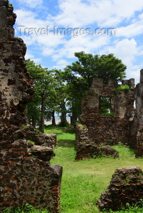 "gambia94: James Island / Kunta Kinteh island, The Gambia: Fort James' ruined walls and baobabs - UNESCO world heritage site, famous after Alex Haley's book ""Roots"" for its role in the triangular slave trade - photo by M.Torres - (c) Travel-Images.com - Stock Photography agency - Image Bank"