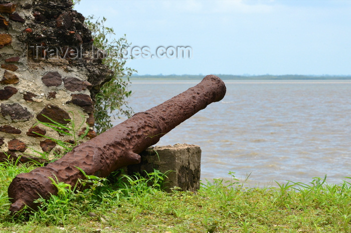 gambia98: James Island / Kunta Kinteh island, The Gambia: colonial cannon aimed at the river Gambia - a UNESCO world heritage site, occupied by the Portuguese in 1456 - photo by M.Torres - (c) Travel-Images.com - Stock Photography agency - Image Bank