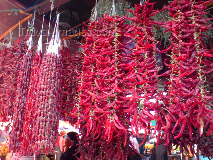 georgia12: Georgia - Tbilisi: red chili peppers - Capsicum - bazaar - photo by N.Mahmudova - (c) Travel-Images.com - Stock Photography agency - Image Bank