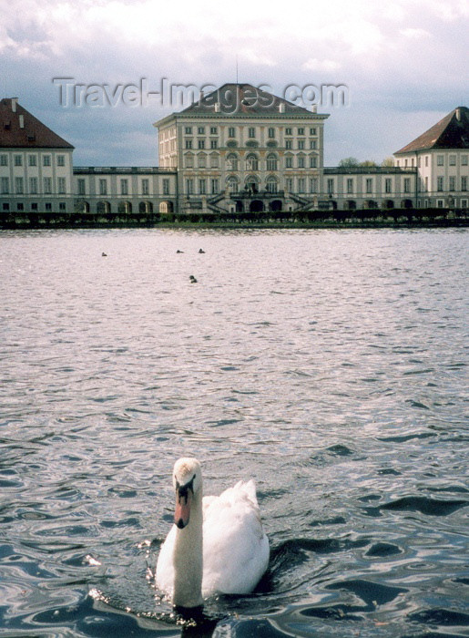 germany18: Germany - Bavaria - Munich / München / MUC : swan by the Nymphenburg palace - Schloss Nymphenburg diente den bayerischen Herrschern als Sommerresidenz (photo by M.Torres) - (c) Travel-Images.com - Stock Photography agency - Image Bank