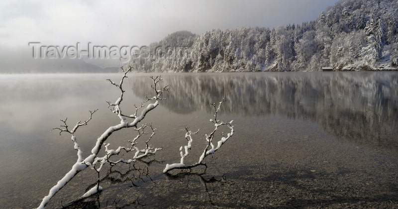 germany319: Germany - Bavaria - Ostallgäu district: Alpsee in the winter - lake scene - photo by W.Algöwer - (c) Travel-Images.com - Stock Photography agency - Image Bank