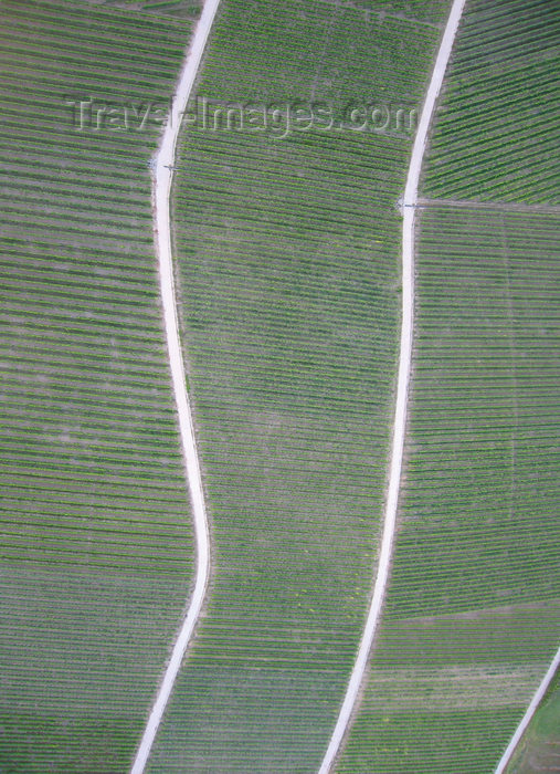 germany358: Würzburg Kreis, Lower Franconia, Bavaria, Germany: vineyards outside Eibelstadt - from the air - photo by D.Steppuhn - (c) Travel-Images.com - Stock Photography agency - Image Bank
