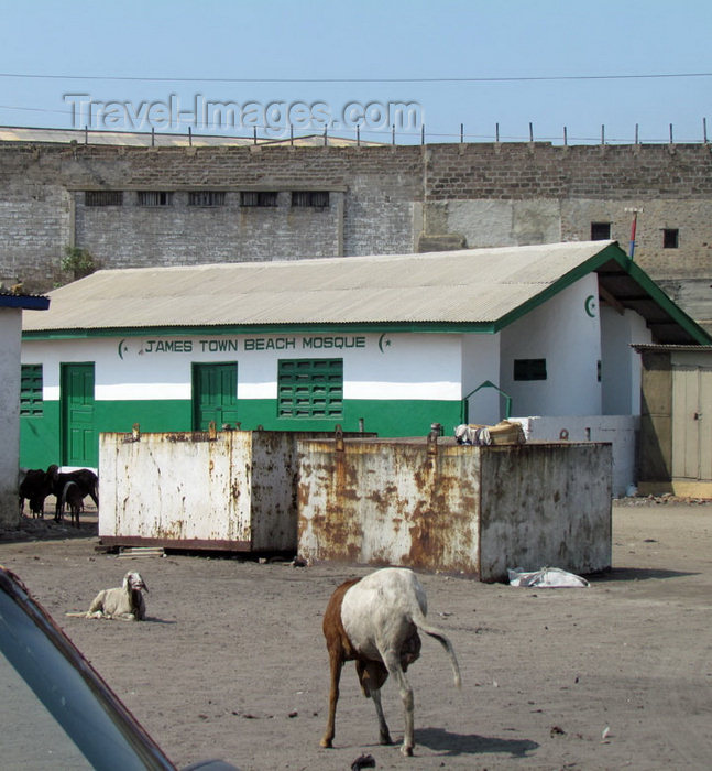 ghana5: Accra, Ghana: Jamestown district - goats and James Town Beach Mosque - photo by G.Frysinger - (c) Travel-Images.com - Stock Photography agency - Image Bank