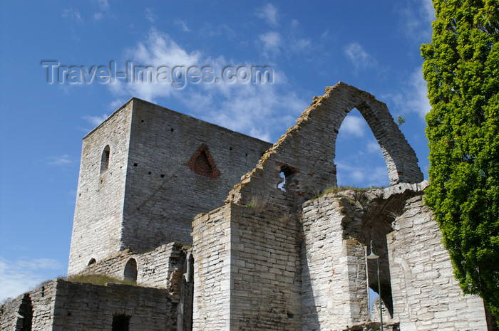 gotland108: Gotland - Visby: ruins of old church on Stora Torget, burned by the soldiers of Lübeck - photo by A.Ferrari - (c) Travel-Images.com - Stock Photography agency - Image Bank