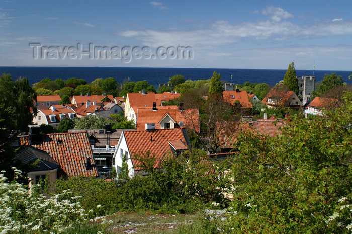 gotland110: Gotland - Visby: rooftops - view over the old Visby from Sankta Maria Cathedral  - photo by A.Ferrari - (c) Travel-Images.com - Stock Photography agency - Image Bank