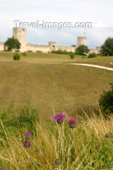 gotland26: Gotland island - Visby: fields and town walls / fälten och stad muren (photo by Cornelia Schmidt) - (c) Travel-Images.com - Stock Photography agency - Image Bank