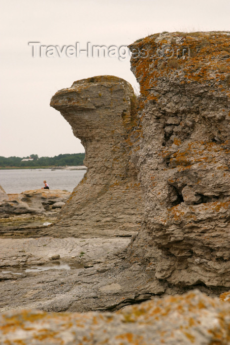 gotland43: Sweden - Gotland island / Gotlands län - Fårö island: Eagle Rock formation - photo by C.Schmidt - (c) Travel-Images.com - Stock Photography agency - Image Bank