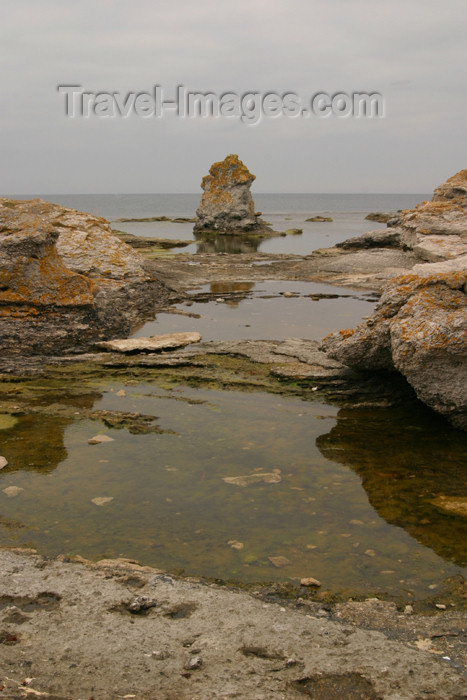 gotland45: Sweden - Gotland / Gotlands län - Fårö island: Baltic coast - puddles and limestone - photo by C.Schmidt - (c) Travel-Images.com - Stock Photography agency - Image Bank