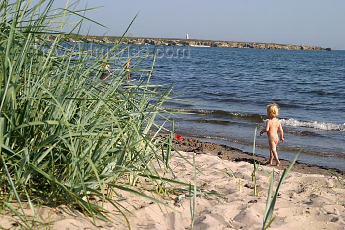 gotland52: Sweden - Gotland / Gotlands län - Fårö island: toddler / baby on the beach - seaside - photo by C.Schmidt - (c) Travel-Images.com - Stock Photography agency - Image Bank