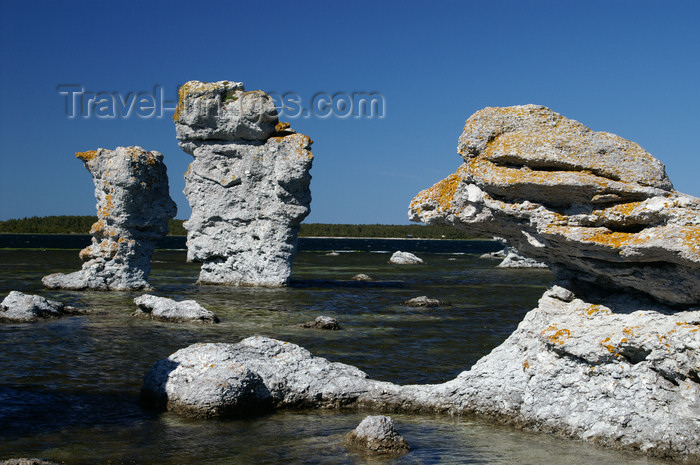 gotland56: Fårö island, Gotland, Sweden - Lauterhorn - Gamle Hamn: 'Raukar' rock formations - columns on the Baltic - photo by A.Ferrari - (c) Travel-Images.com - Stock Photography agency - Image Bank