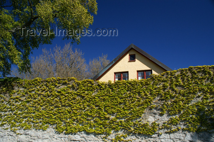 gotland80: Gotland - Visby:  wall and house top, outside Almedalen park - photo by A.Ferrari - (c) Travel-Images.com - Stock Photography agency - Image Bank