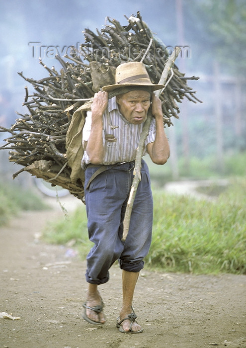 guatemala41: Guatemala - Lago de Atitlán: old man with firewood (photo by A.Walkinshaw) - (c) Travel-Images.com - Stock Photography agency - Image Bank