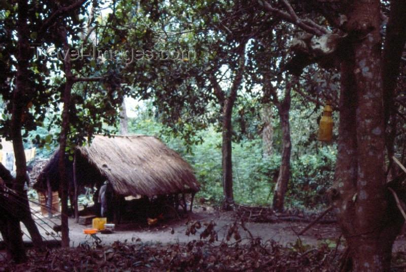 guinea-bissau18: Guinea Bissau / Guiné Bissau - Tabanka du matu - hut in the jungle (foto de / photo by Dolores CM) - (c) Travel-Images.com - Stock Photography agency - Image Bank
