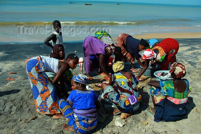 guinea-bissau183: Praia de Varela / Varela beach, Cacheu region, Guinea Bissau / Guiné Bissau: circle of women gutting the fish / círculo de mulheres a amanhar o peixe - photo by R.V.Lopes - (c) Travel-Images.com - Stock Photography agency - Image Bank