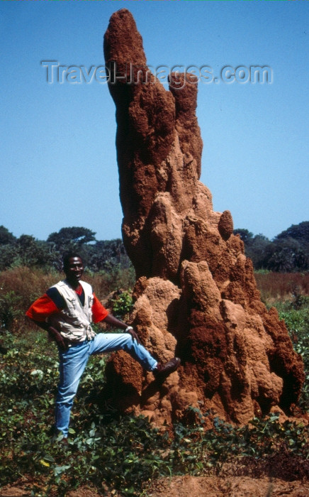 guinea-bissau6: Guinea Bissau / Guiné Bissau - Bula: giant ant hill - termites / castelo de térmitas - Baga-Baga (foto de / photo by Dolores CM) - (c) Travel-Images.com - Stock Photography agency - Image Bank
