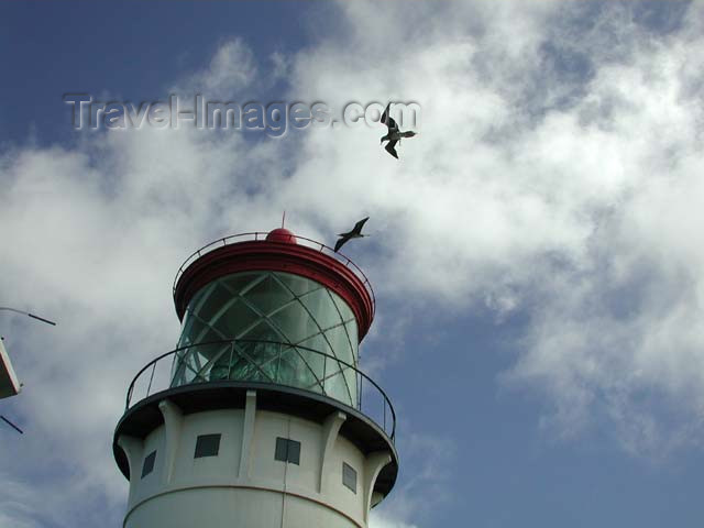 hawaii32: Hawaii - Kauai island: lighthouse - birds - photo by P.Soter - (c) Travel-Images.com - Stock Photography agency - Image Bank