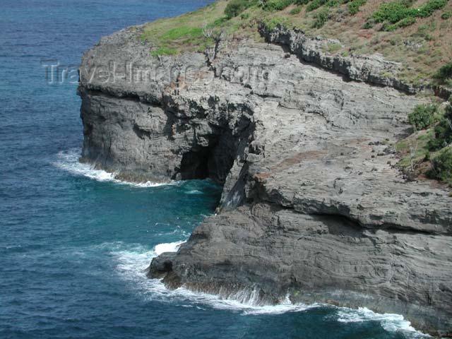 hawaii33: Hawaii - Kauai island: Kiluea point - photo by P.Soter - (c) Travel-Images.com - Stock Photography agency - Image Bank