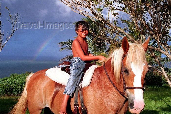 hawaii74: Hawaii - Maui island: horse and rainbow - Photo by G.Friedman - (c) Travel-Images.com - Stock Photography agency - Image Bank