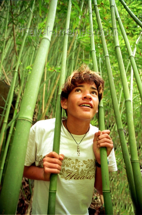 hawaii76: Hawaii - Maui island: boy in the bamboo forest - Eastern Maui - Photo by G.Friedman - (c) Travel-Images.com - Stock Photography agency - Image Bank