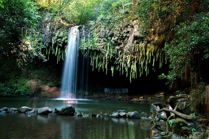 hawaii82: Hawaii - Maui island: Twin Falls, halfway between Lahaina and Hana - Photo by G.Friedman - (c) Travel-Images.com - Stock Photography agency - Image Bank