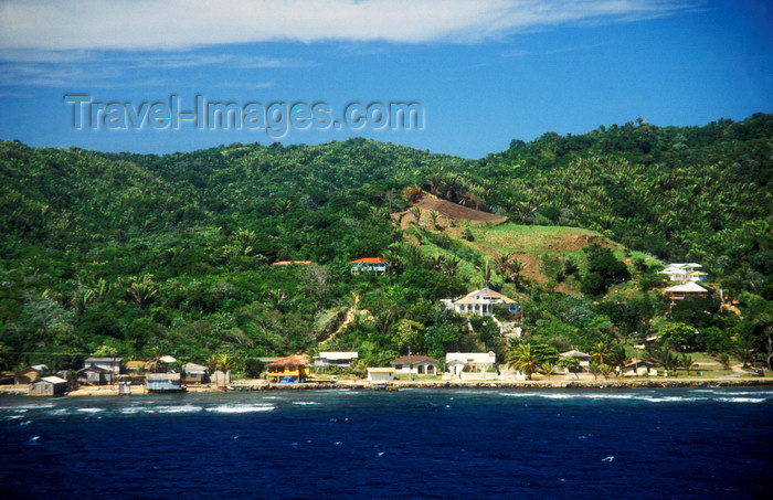honduras10: Honduras - Roatan island: lush shoreline - Caribbean Sea - photo by D.Forman - (c) Travel-Images.com - Stock Photography agency - Image Bank