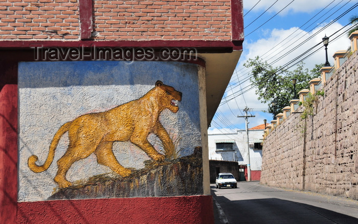 honduras28: Tegucigalpa, Honduras: lioness mural under Parque La Leona, aka Parque Manuel Bonilla - photo by M.Torres - (c) Travel-Images.com - Stock Photography agency - Image Bank