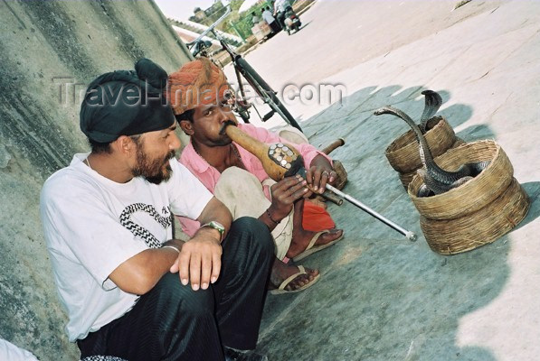 india205: India - Jaipur (Rajastan): snake charmer - photo by J.Kaman - (c) Travel-Images.com - Stock Photography agency - Image Bank