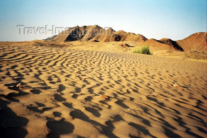 india206: India - Thar desert, Rajasthan - photo by J.Kaman - (c) Travel-Images.com - Stock Photography agency - Image Bank