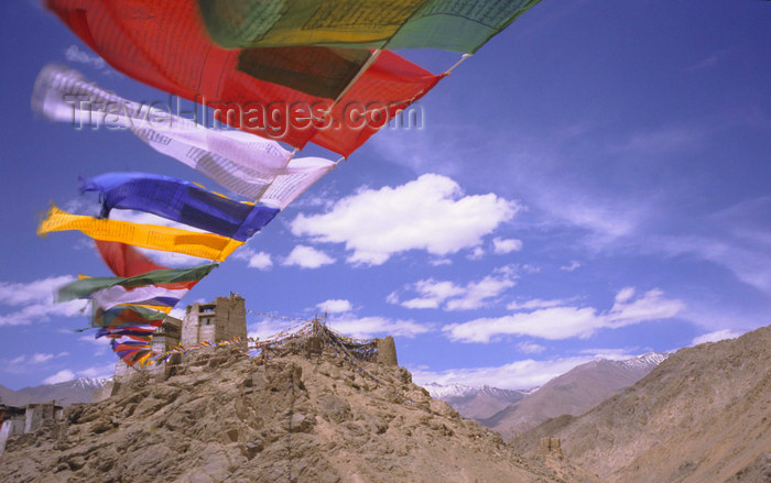 india332: India - Ladakh - Jammu and Kashmir - Leh: prayer flags connect the two peaks of the peak of victory - Namgyal Tsemo Gompa in the background - photo by W.Allgöwer - (c) Travel-Images.com - Stock Photography agency - Image Bank