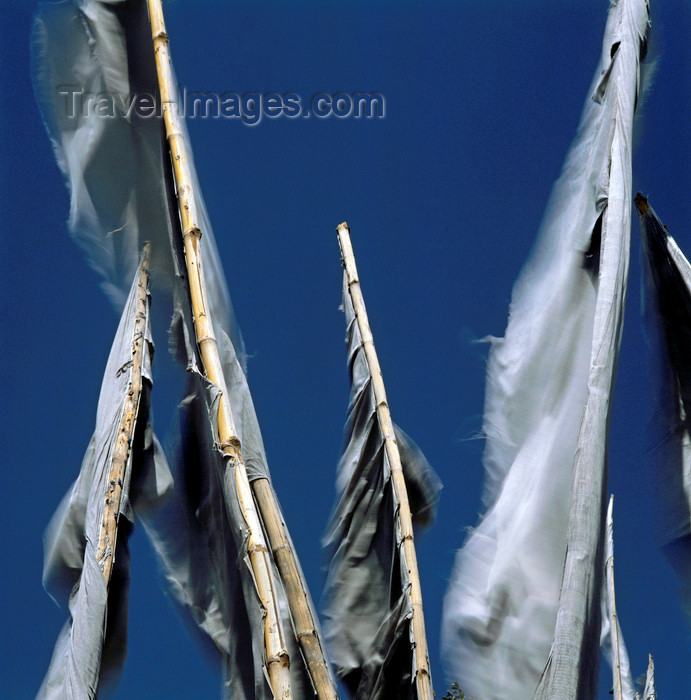india386: India - Himachal Pradesh: Buddhist prayer flags - photo by W.Allgöwer - (c) Travel-Images.com - Stock Photography agency - Image Bank