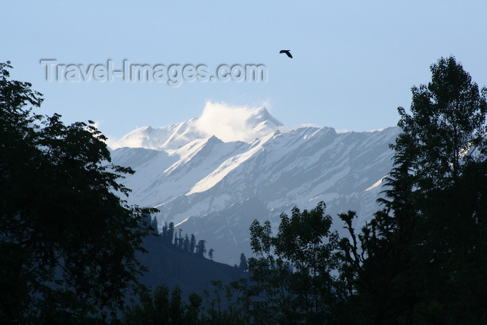 india400: India - Manali (Himachal Pradesh, Himalayas): mountain view - photo by M.Wright - (c) Travel-Images.com - Stock Photography agency - Image Bank