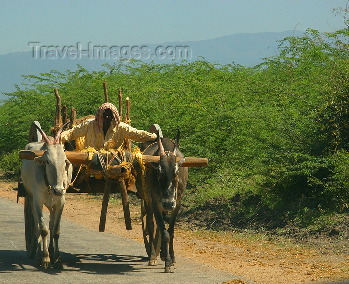 india434: rural Karnataka, India: a farmer and his ox cart - photo by J.Cave - (c) Travel-Images.com - Stock Photography agency - Image Bank