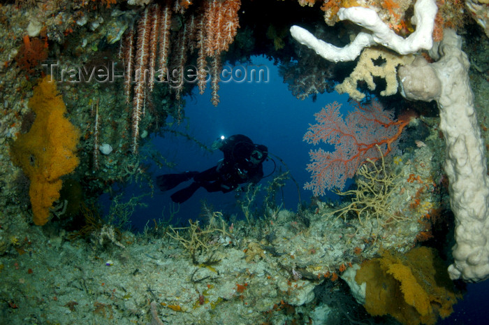 indonesia50: Wakatobi archipelago, Tukangbesi Islands, South East Sulawesi, Indonesia: diver in cavern of soft corals - Banda Sea - Wallacea - photo by D.Stephens - (c) Travel-Images.com - Stock Photography agency - Image Bank
